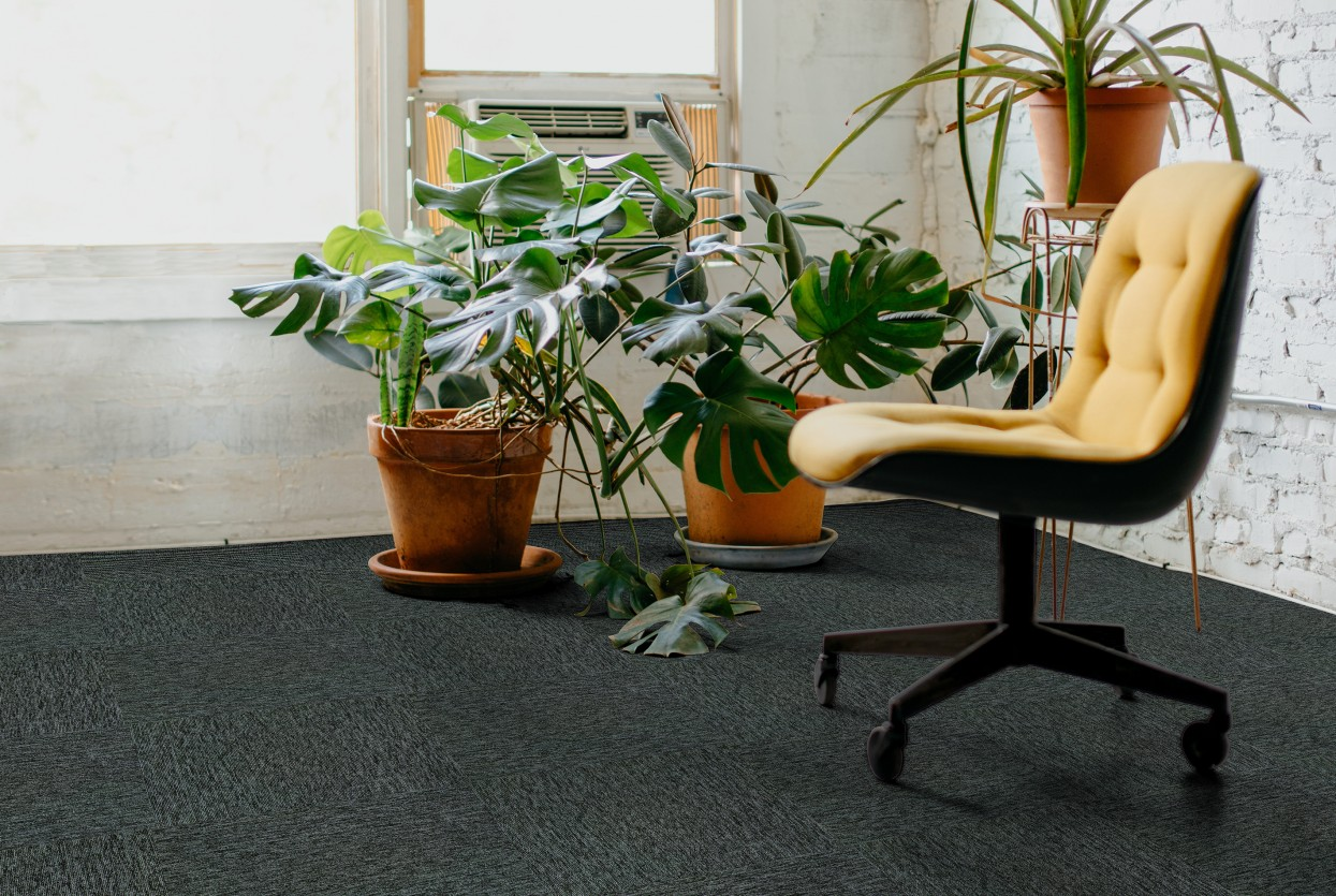 Alpine Commercial Carpet Tiles Installation 3 Web Small